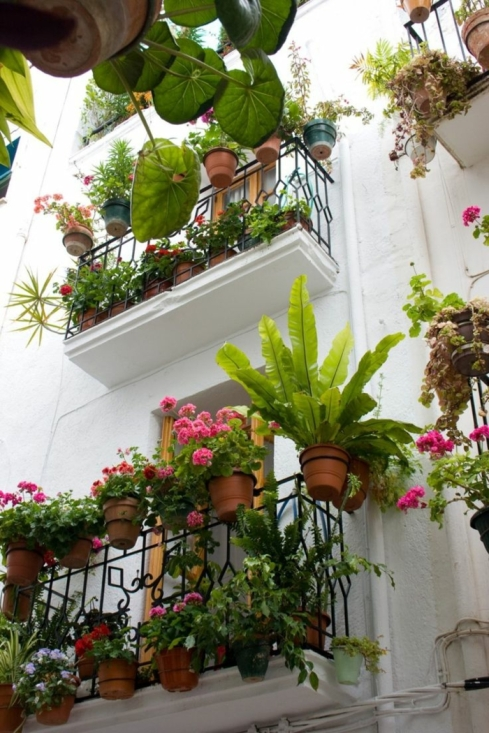 balcon fleuri balcon