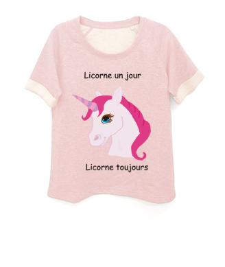 licorne blogueuse
